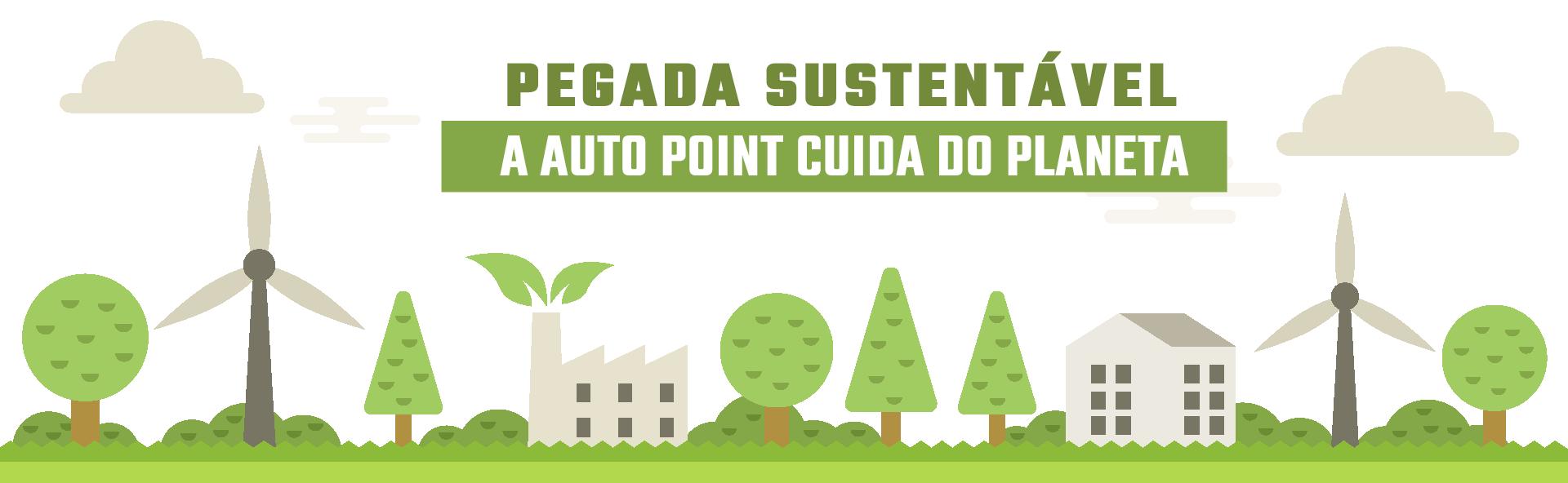 Programa de Sustentabilidade Auto Point